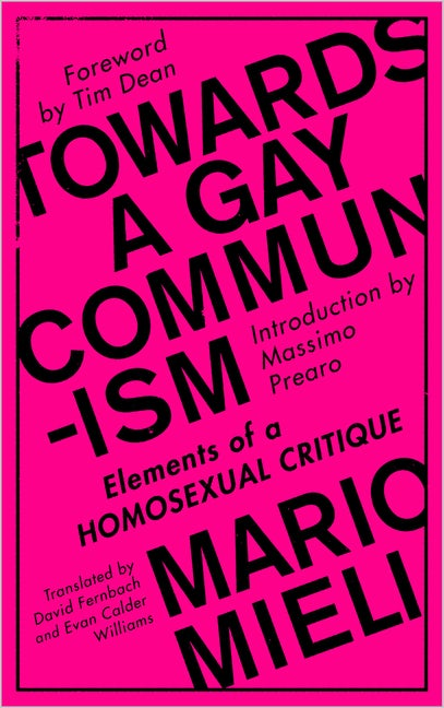 Towards a Gay Communism